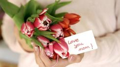 Close-Up Of Hands Holding Tulips For Mom