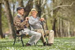 A nyugdíjasok februártól további 20 ezer dináros támogatásra számíthatnak (Fotó: Ótos András felvétele)