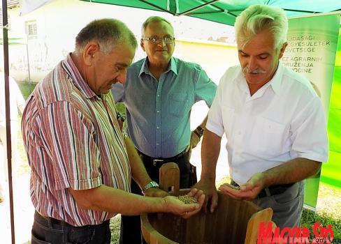 Tavaly több mint 15 tonna búzát adományoztak a vajdasági gazdák (Szögi Csaba felvétele)