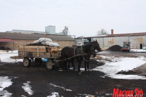 Stara Moravica citizens traditionally transfer their fueling material home with horse-drawn carriages operating in the village