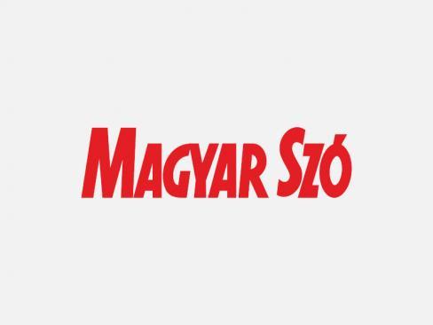 A Nemzeti Arcvonal egyik tagja náci karlendítéssel üdvözli a fasizmus ellen sétával tiltakozó tömeget 2007-ben (Fotó: Reuters)
