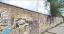 A szabadkai vasútállomáshoz tartozó összegraffitizett fa (Tomislav Dedović felvétele)<br />